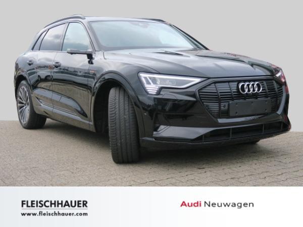 Audi e-tron 55 quattro advanced Panoramadach