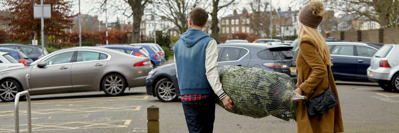 weihnachtsbaum zum auto transportieren
